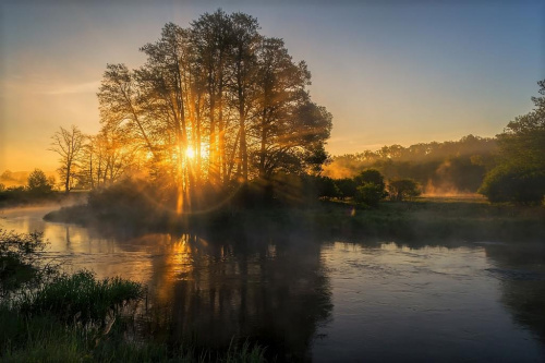 Światło i mgła #d3100 #drzewa #gwda #las #mgła #motylewo #niebo #nikon #odbicie #poranek #rzeka #świt #wieś #woda