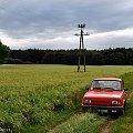#drzewo #mgła #pole #PuszczaPyzdrska #samochód #słup #Wartburg