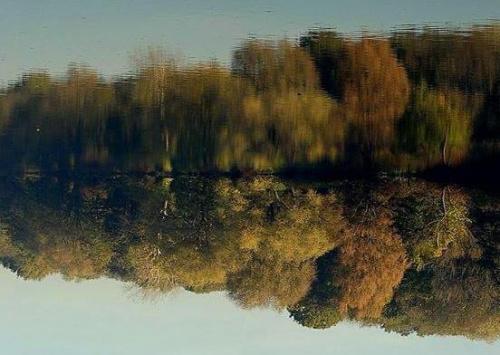 #jesien #jesień #jezioro #liscie #liście