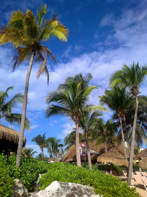 Listopad na Jukatanie #AmerykaŚrodkowa #Meksyk #Jukatan