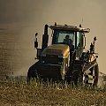 NA POLACH NASZYCH #traktor #ciągnik #NaPolach #WojciechWrzesień #fotmart #fotosik #pole #galeria #rolnik