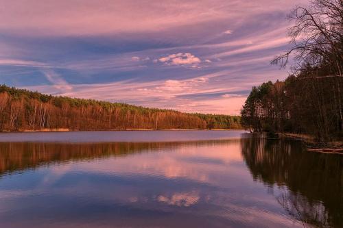 Rezerwat Krajobrazowy Kuźnik. #d3100 #Kuźnik #Nikon #Piła #Rezerwat #Wielkopolska