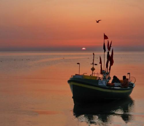 Powrót z łowiska #wschód #kuter #rybactwo