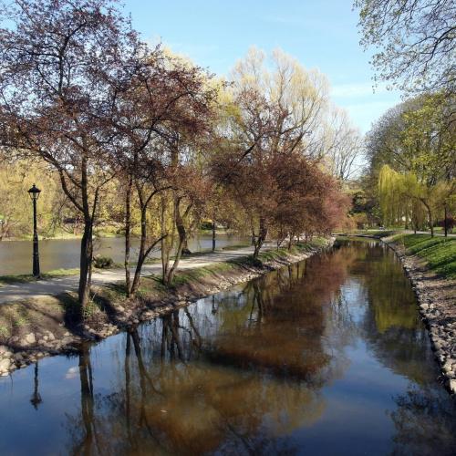 Alejka w parku? #Amfiteatr #elektronik #gołębie #poczta #WiosnaWParku