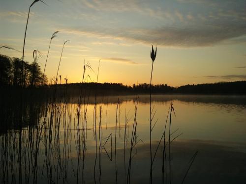Jezioro B nad ranem #JEZIORO #WSCHÓDSŁOŃCA